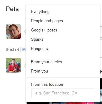 ms google plus search 11
