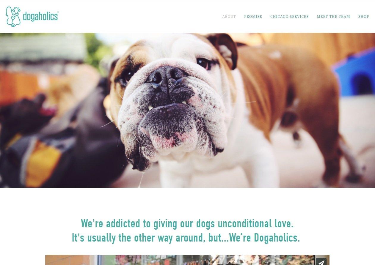 web design of Dog a holics